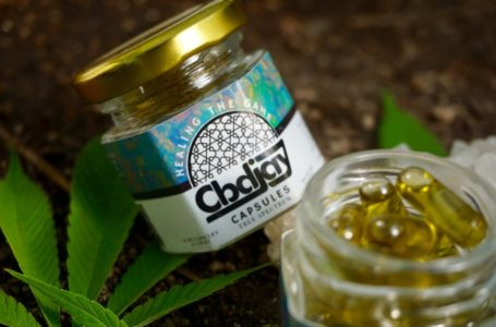 CBDJay Review (CBD Brand from Santa Fe, New Mexico)