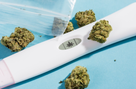 What Midwives Should Know About Pregnancy, Marijuana, and CBD