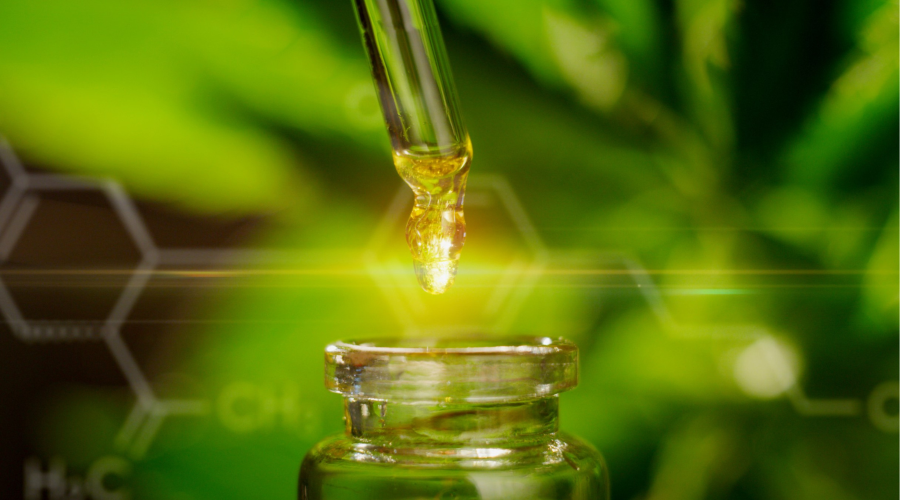 Benefits of CBD Oil in Treating Various Health Related Issues